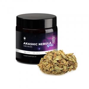 Akashic Nebula